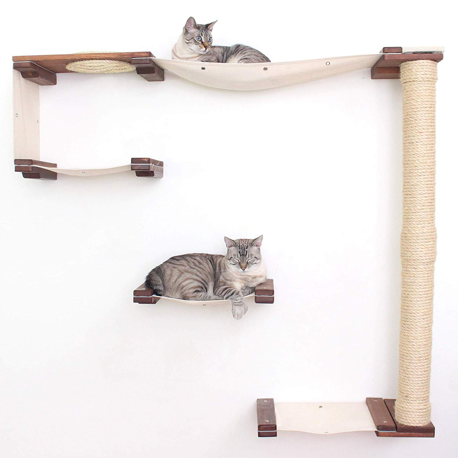 CatastrophiCreations Cat Mod Climb Track Handcrafted Wall Mounted Cat Tree review